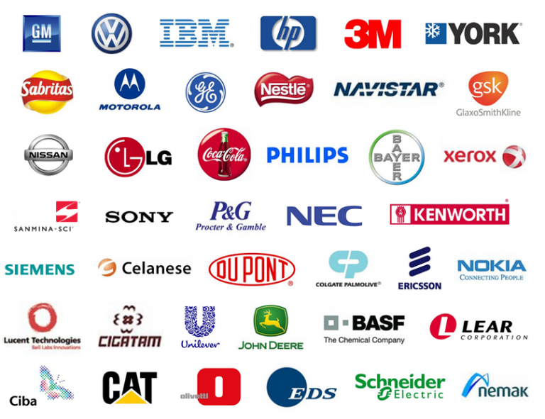 list three differences between company multinational company and trans multinational company
